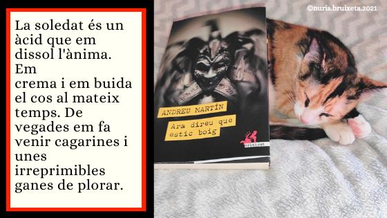 Ara direu que estic boig. Andreu Martín