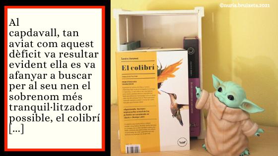El colibrí. Sandro Veronesi